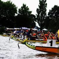 Ruderboote bei einem Rennen auf dem Werdersee