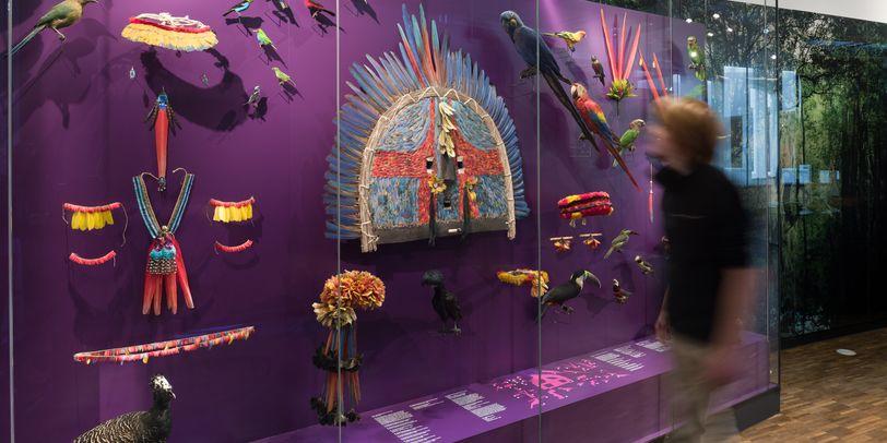 Blick in die Amerika-Ausstellung im Übersee-Museum
