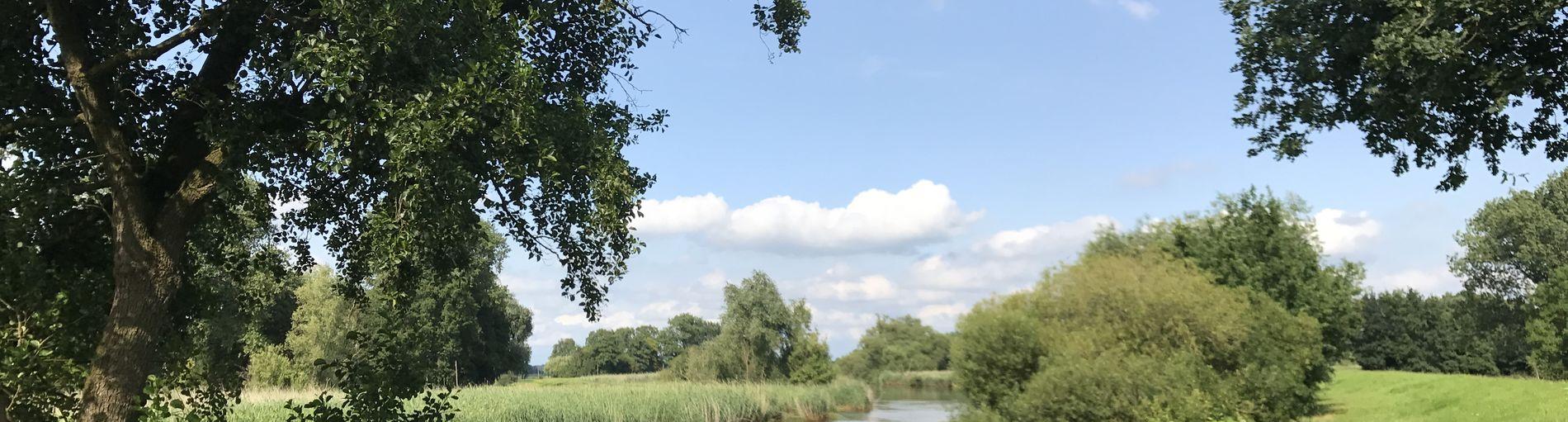 Ein Fluss, der von grünen Wiesen und Bäumen umgeben ist.