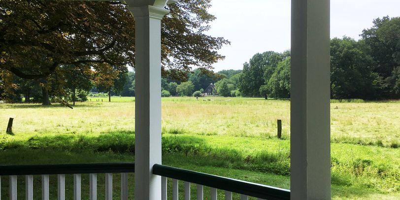 Der Blick über einen weißen Zaun auf eine grüne Wiese