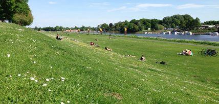 Ein Blick über die große Grünfläche am Osterdeich.
