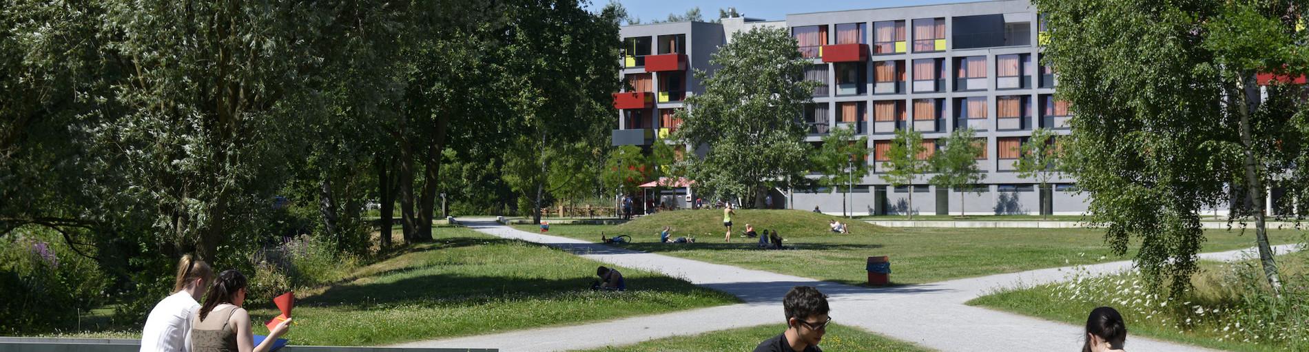 Studenten sitzen auf dem Rasen auf dem Uni Gelände und genießen die Sonne