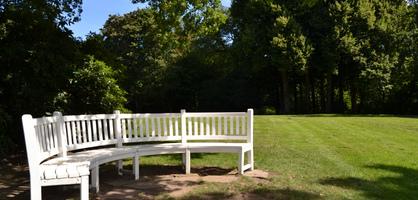Eine weiße Bank in einem Park, die von der Sonne angestrahlt wird, viele Bäume darum herum.