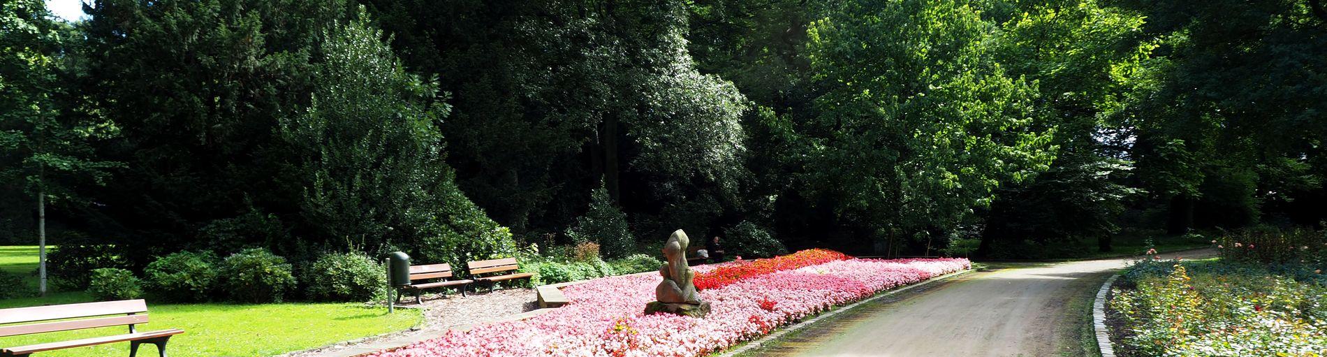 Ein Weg durch den Schlosspark in Sebaldsbrück. Links vom Weg ist ein großes Blumenbeet mit einer Statue, dahinter sind Bänke