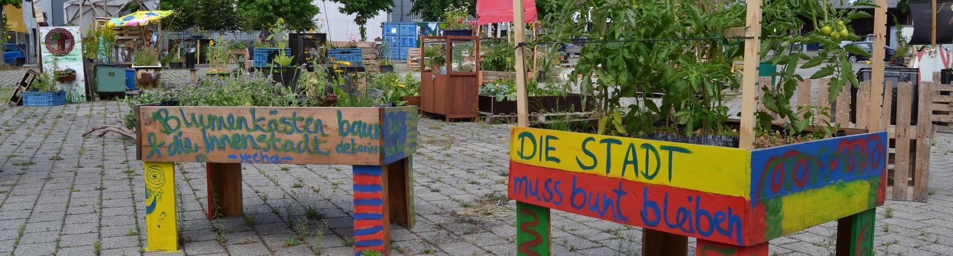 Hochbeete mit grünen Pflanzen stehen auf einem betonierten Platz; Quelle: bremen.online GmbH - MDR