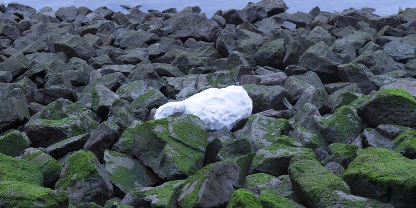 Ein weißer großer Stein liegt zwischen anderen mit Moos bewachsenen Steinen.