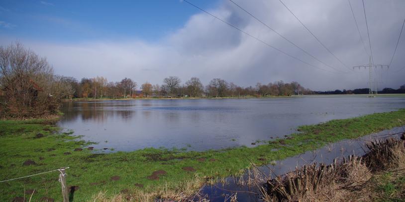 Eine überschwemmte Wümmewiese mit grünem Gras außen herum.