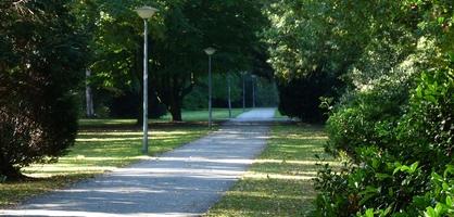 Ein Wanderweg führt durch das Grünzentrum Leher Feld