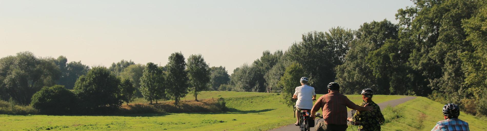 Vier Radfahrer auf dem Deich im Ortsteil Habenhausen