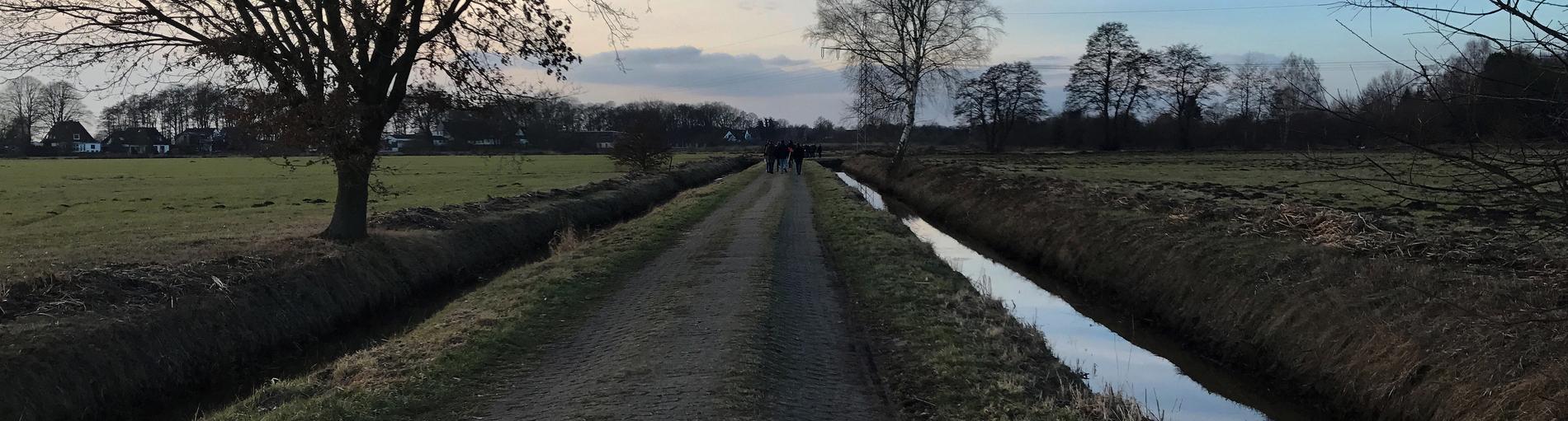 Ein gepflasterter Spazierweg im Hollerland in Horn-Lehe