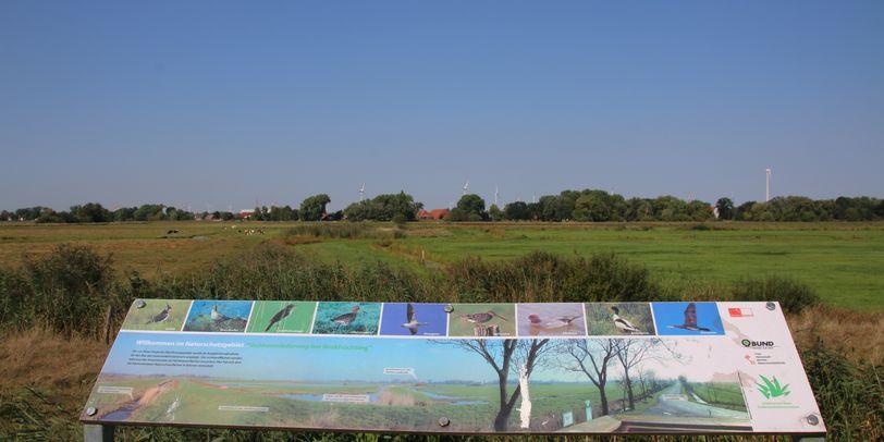 Im Vordergrund eine Hinweistafel, im Hintergrund die Ochtumwiesen