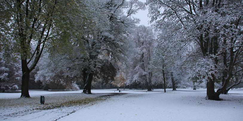 Park im Schnee (Quelle: privat/KMU)