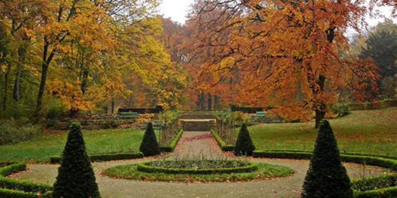 Park mit angelegten Wegen