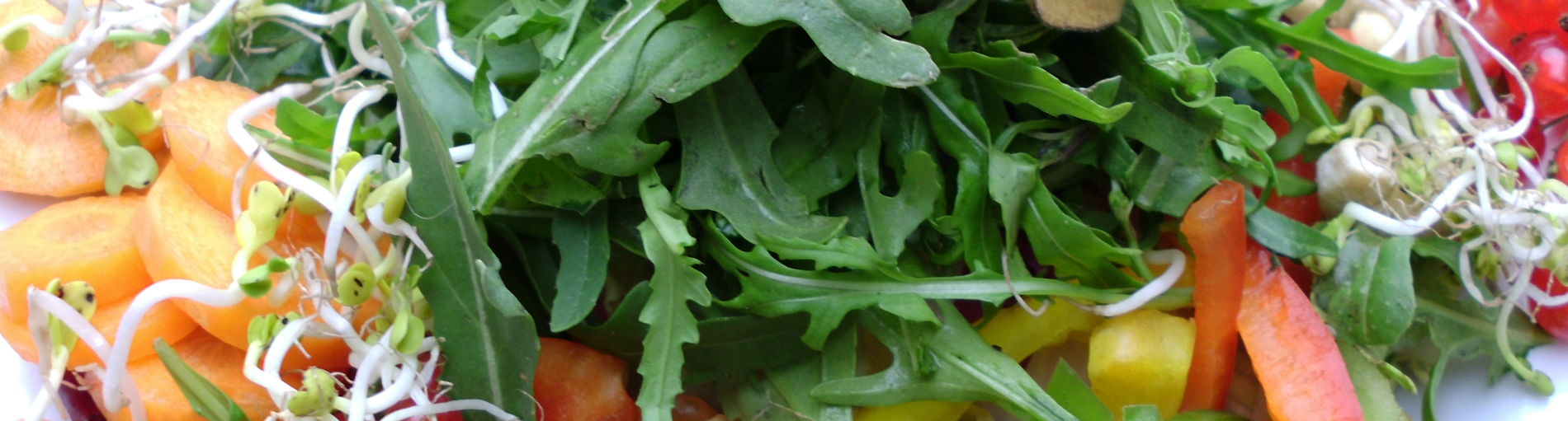 Salat (Quelle: K. Bünn/bremen.online GmbH)