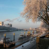 Die Weser und die Bremer Schlachte in der Morgensonne, Bäume voller Eis; Quelle: WFB/bremen.online - MDR