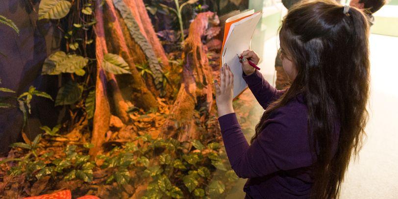 Eine Schülerin steht vor einem Glas. Dahinter asiatischer Regenwald.