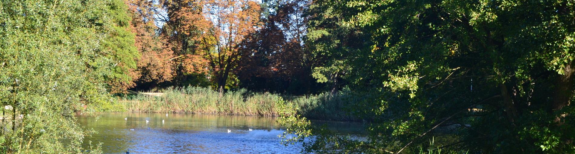 Der See im Waller Park. (Foto: WFB / bremen.online - VK)