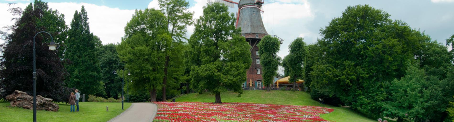 Eine Mühle auf einer Erhebung, davor ein großes Blumenbeet