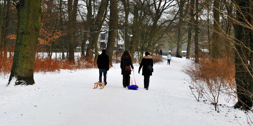 Drei Personen gehen durch den Park, zwei von ihnen ziehen einen Schlitten hinter sich (Foto: privat/JUA).
