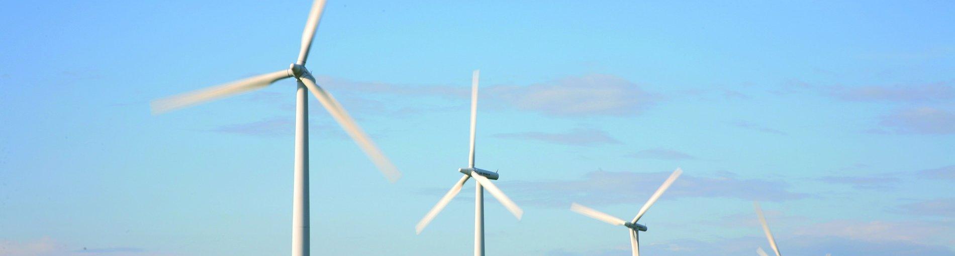 Windräder (Quelle: WFB / Jens Lehmkühler)