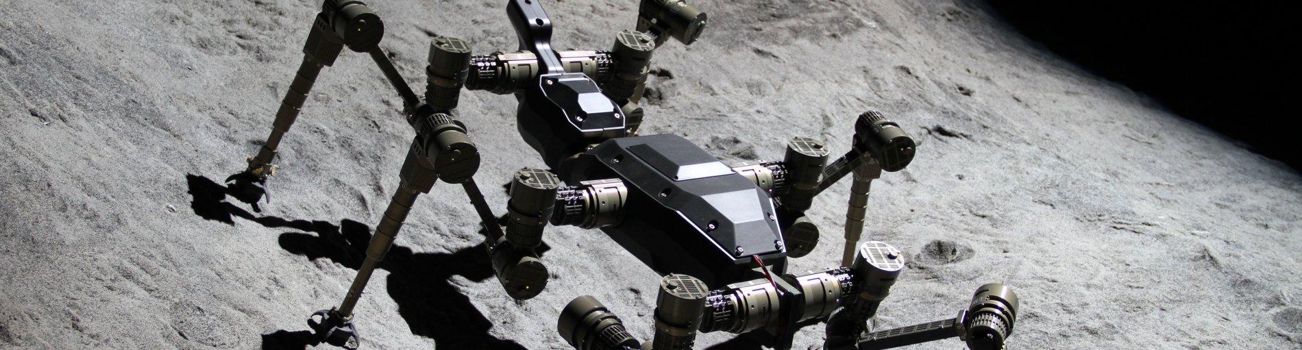 Ein freikletternder Roboter