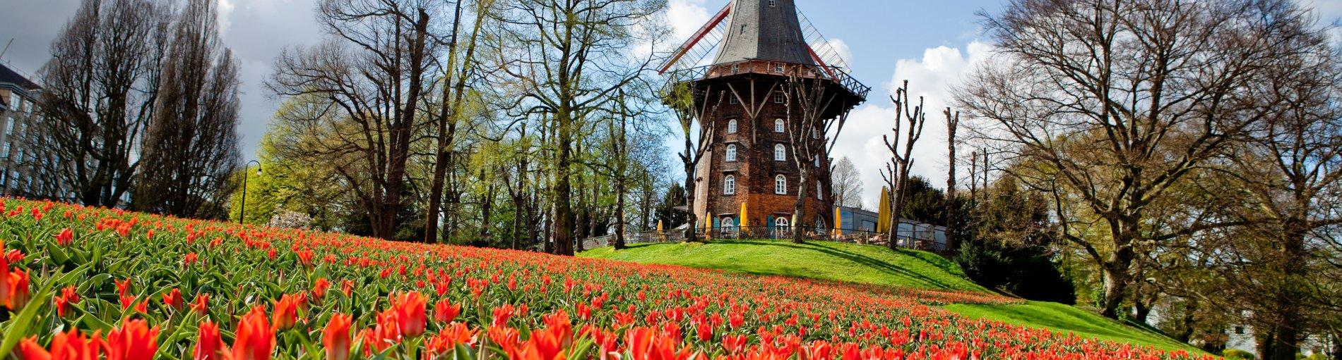 Kaum zu glauben, aber wahr: Dieses idyllische Plätzchen liegt mitten in der Innenstadt Bremens!