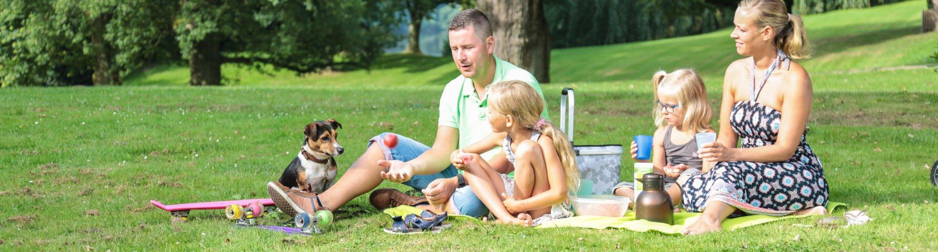 Eine vierköpfige Familie sitzt auf einer Picknickdecke im Park, einkleiner Hund schaut zu