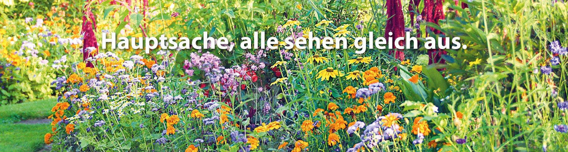 Eine bunte Blumenwiese mit Schriftzug: Hauptsache, alle sehen gleich aus.