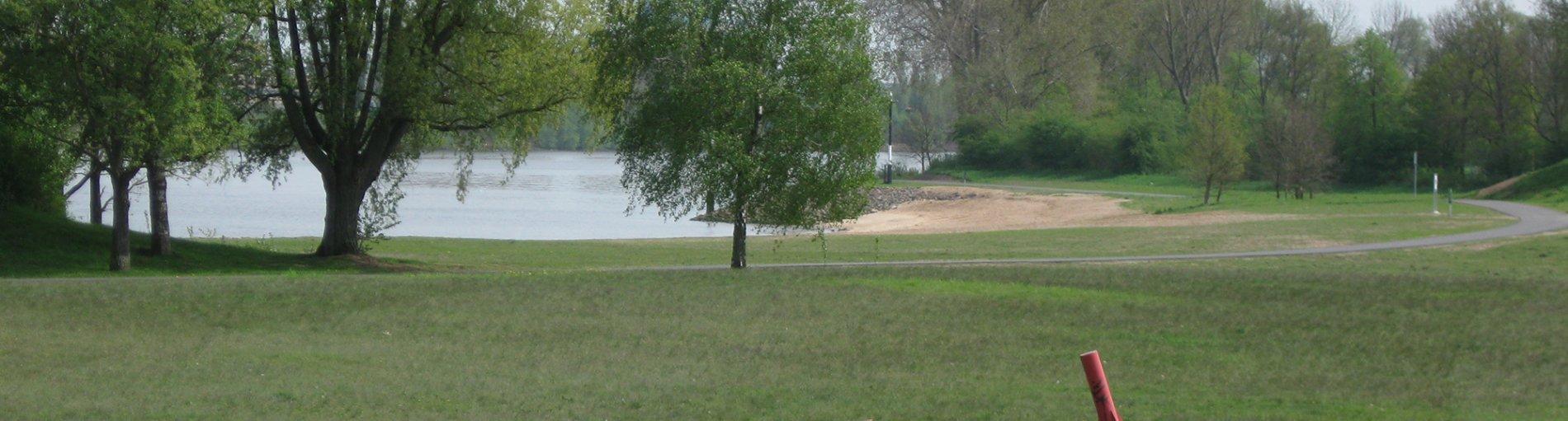 Grüne Bäume und Wiesen am Ufer.