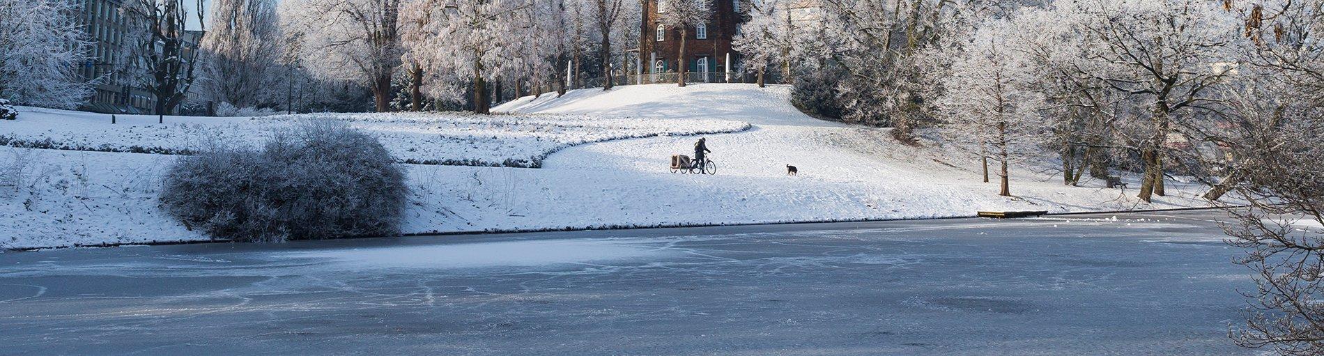 Mensch mit Fahrrad und Hund in Schneelandschaft