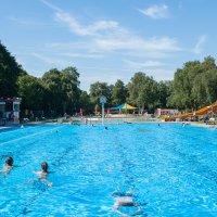 Schwimmer im Becken des Freibads in Horn