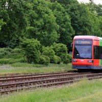 Eine Straßenbahn in grüner Umgebung in der Vahr