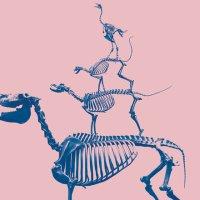 Skelette der Bremer Stadtmusikanten vor einem rosafarbenen Hintergrund.