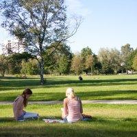 Zwei Frauen sitzen im Gras und lesen