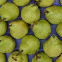 Eine Obstkiste mit Äpfel, Birnen und Nektarinen; Quelle: WFB/bremen.online - MDR
