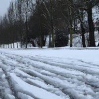 Fahrradspuren im Schnee