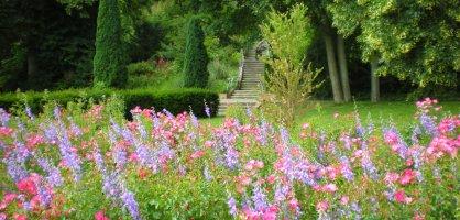 Park mit Treppe