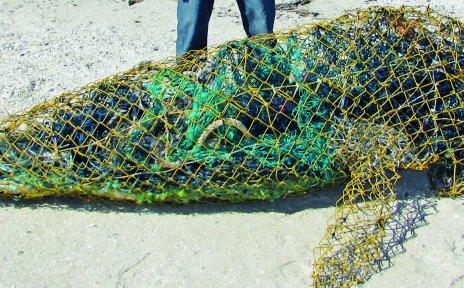 Fisch geformt aus Fischernetzen