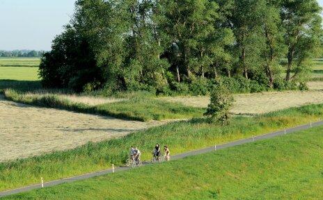 Bike It Fahrradfahrer Bremerhaven