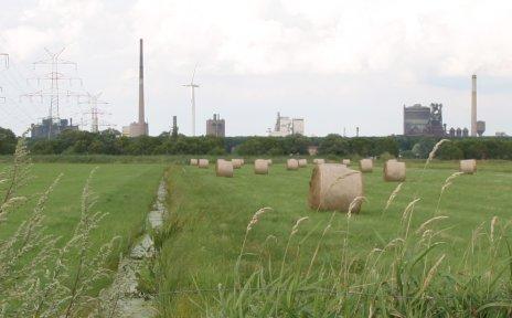 Marschland, im Hintergrund Industrie; Quelle: Ortstamt Seehausen