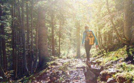 Eine Frau trägt einen gelben Rucksack und läuft über einen steinigen Weg in einem Wald.