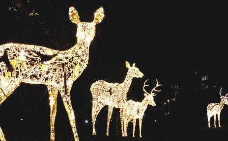 Leuchtende Hirsche in den Wallanlagen.