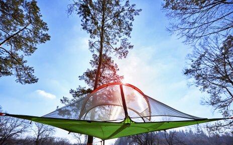 Ein Zelt, das im Wald in den Bäumen hängt.