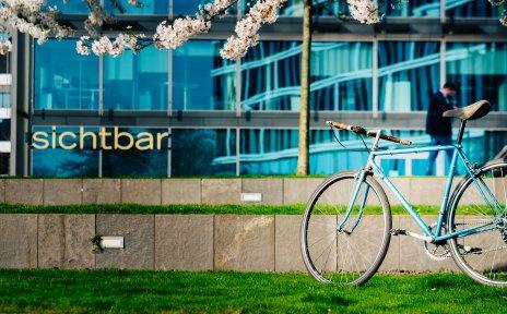 Ein Fahrrad steht an einem blühenden Baum