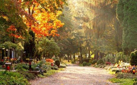 Zu sehen ist ein Weg, links und rechts davon sind einige Gräber und viele Bäume und Büsche sind. Sonnenstrahlen scheinen zwischen den Bäumen durch.