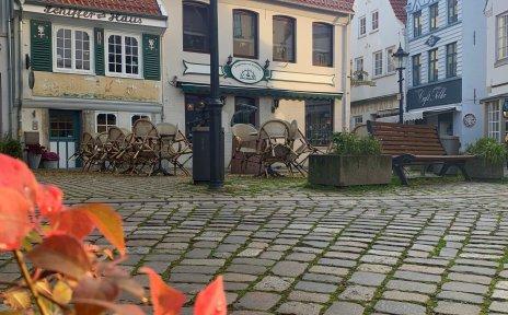 Buntgefärbte Blätter vor einer Häuserkulisse und Backsteinboden.