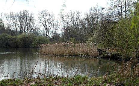 Blick auf einen See in der Grünanlage in Arsten