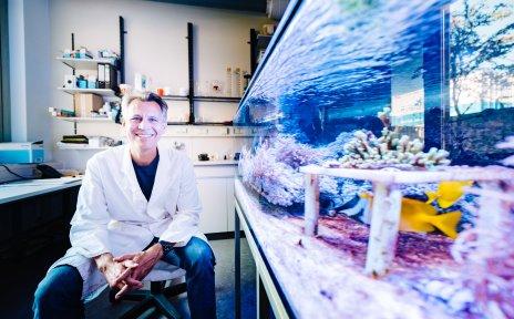 Ein Wissenschaftler vor einem Aquarium