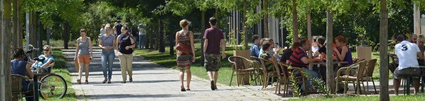 Grünanlage auf dem Campus der Uni Bremen