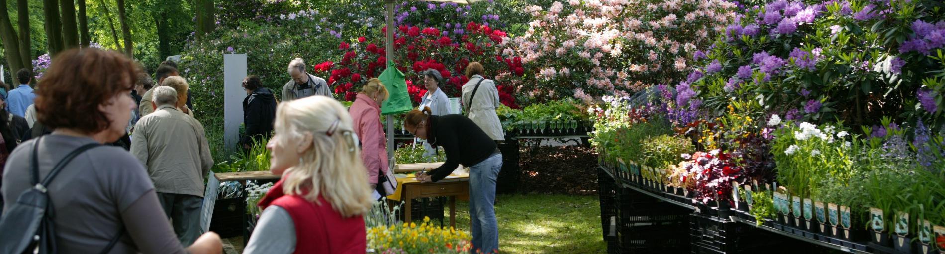 Botanischer Frühlings-Pflanzenmarkt